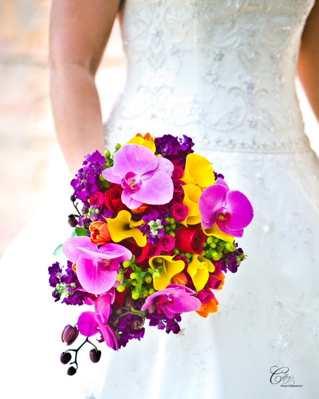 Stunning brides bouquet with a cascade of orchids surrounded by a luscious spray of spring flowers.
